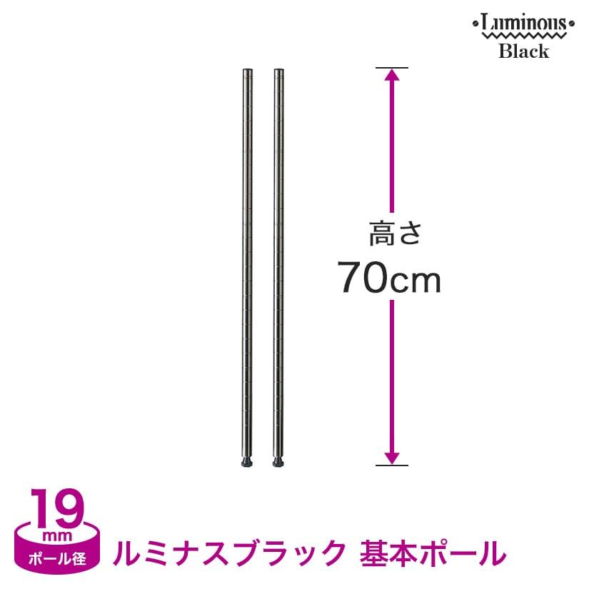 [19mm](高さ70cm) ルミナスブラック 基本ポール2本組 BNP19-070