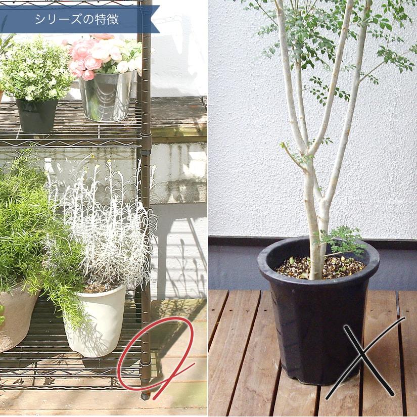 <span>床置きによる、根腐れや害虫侵入対策にも</span>夏季は床にそのまま鉢を置いてしまうと地面の熱が伝わりやすく、冷めにくいため、植物に悪影響を与えてしまうことも。ガーデンラックなら鉢底からの害虫の侵入を防ぎ、根腐れを起こしにくくします。